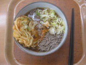赤城高原SA (上り)「天ぷら蕎麦」