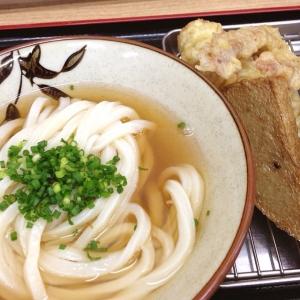 讃岐うどん生麺